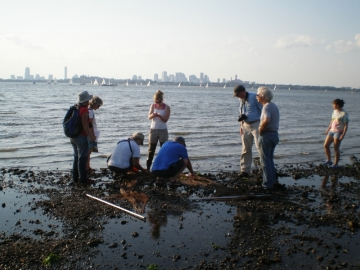 Boston Harbor stewardship