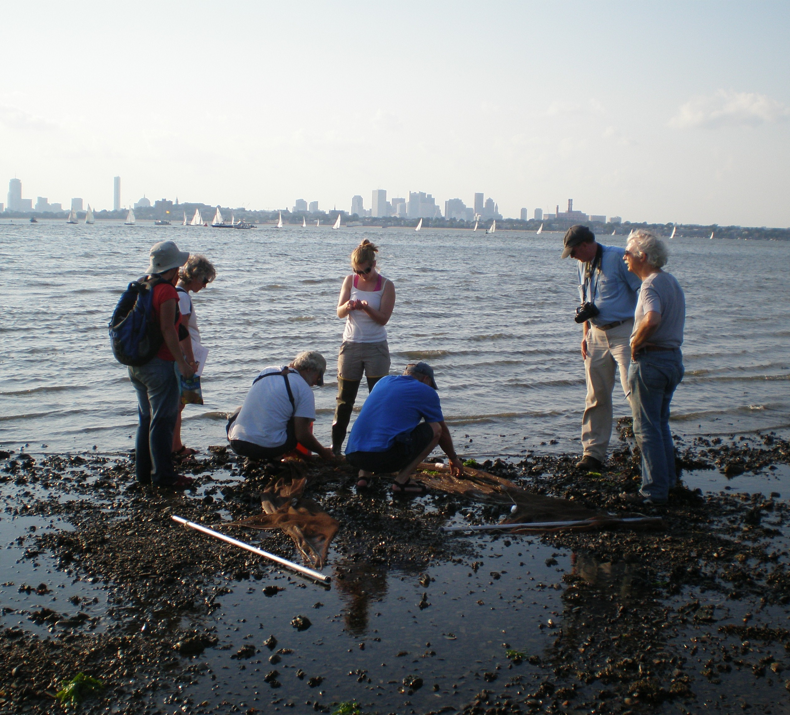 Tide-pooling on a Boston Harbor Island