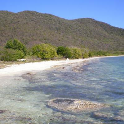 Nightmare in the British Virgin Islands