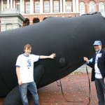 Right Whale at Statehouse