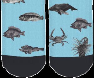 bottom sock fish