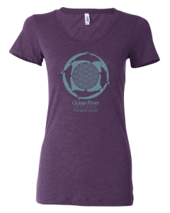 Ocean River Institute Dolphins Shirt - Women's Cut