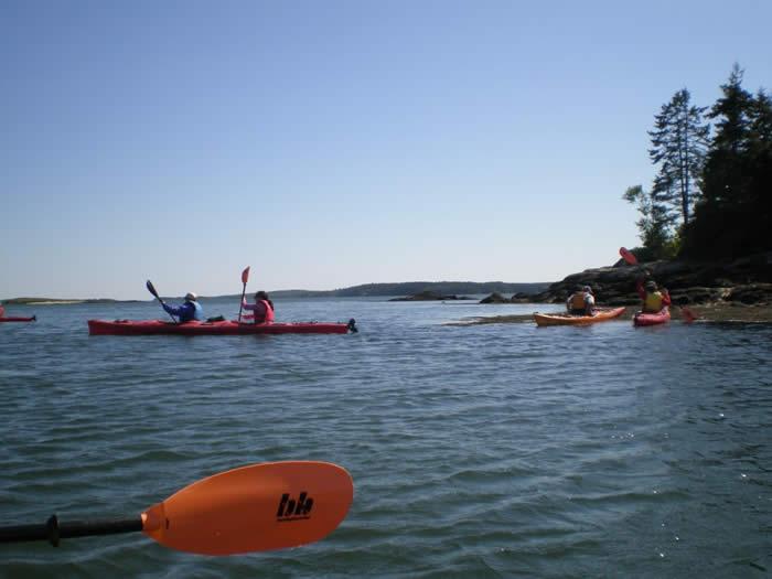 Maine Kayakers