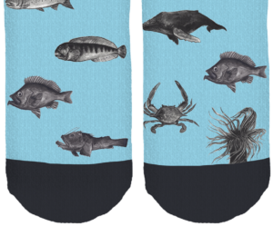 bottom sock fish